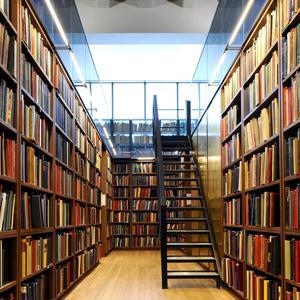 Библиотеки Альметьевска
